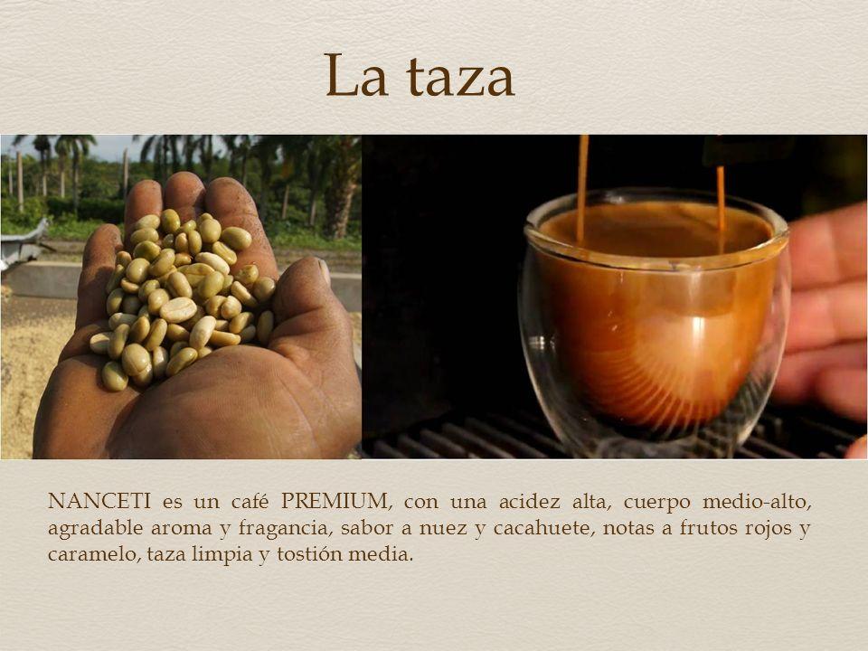 Certificaciones Las tierras donde se produce y transforma CAFÉ NANCETI han merecido las certificaciones Rainforest Alliance TM, UTZ Good Inside, Starb