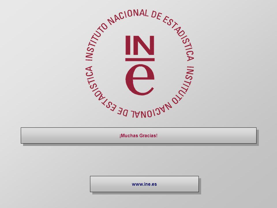 ¡Muchas Gracias! www.ine.es