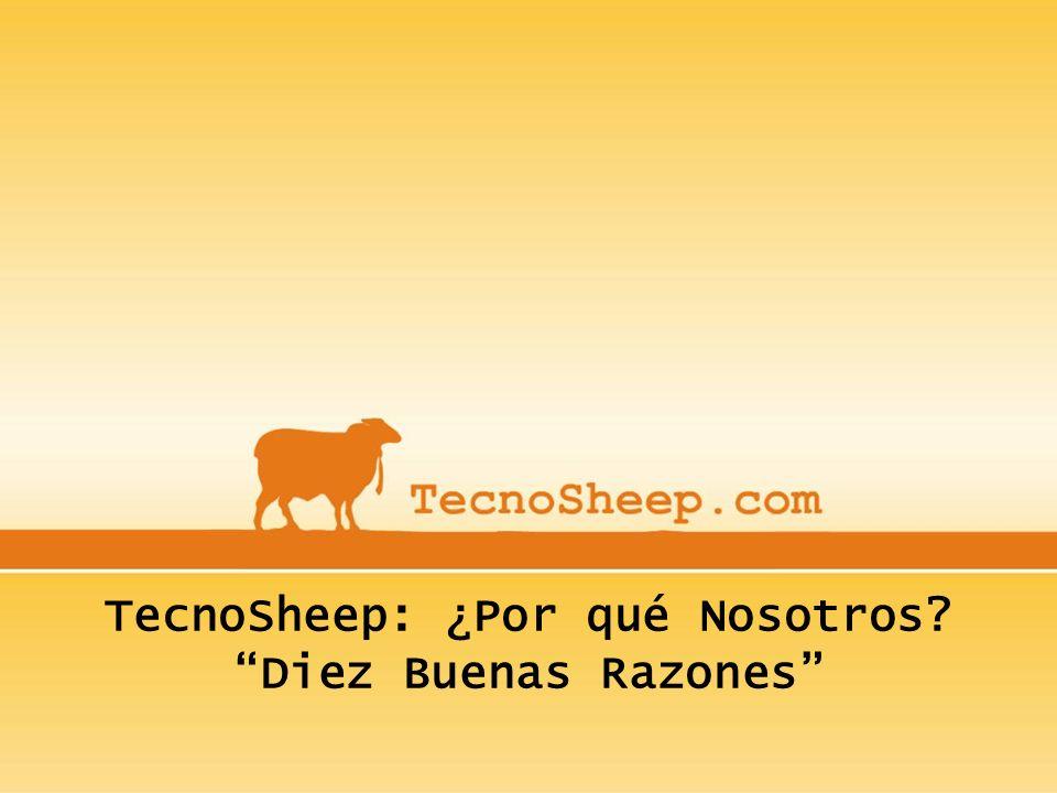 TecnoSheep: ¿Por qué Nosotros? Diez Buenas Razones