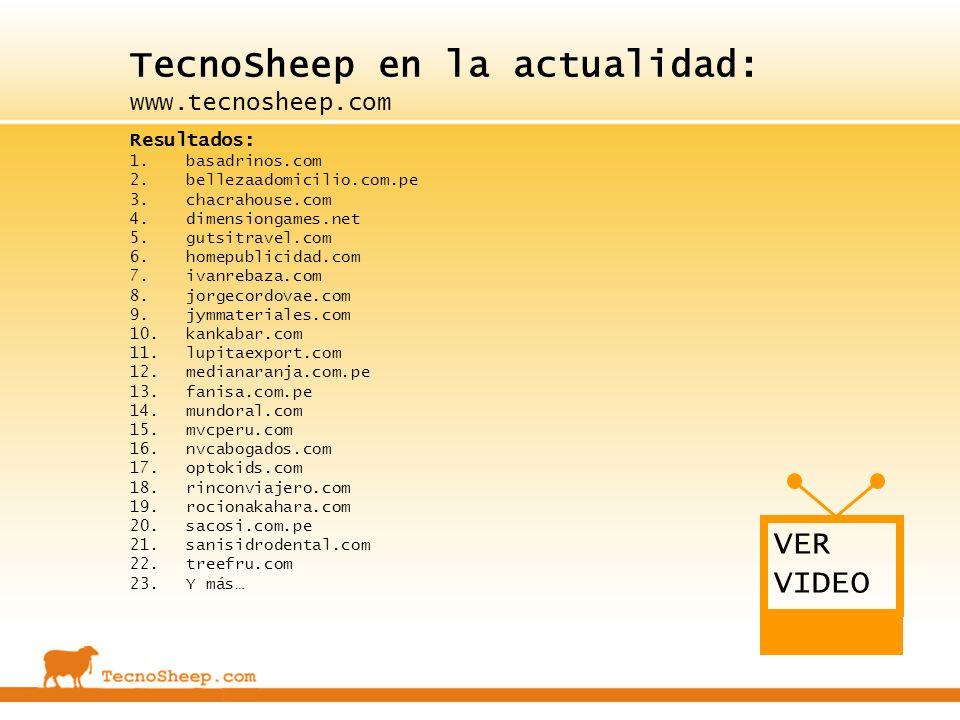 TecnoSheep en la actualidad: www.tecnosheep.com Resultados: 1.basadrinos.com 2.bellezaadomicilio.com.pe 3.chacrahouse.com 4.dimensiongames.net 5.gutsi
