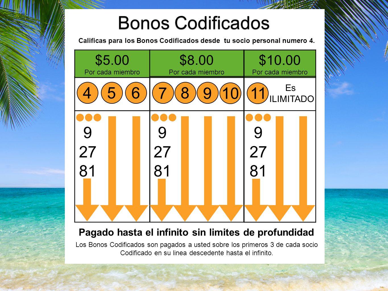 Bonos Codificados Calificas para los Bonos Codificados desde tu socio personal numero 4.