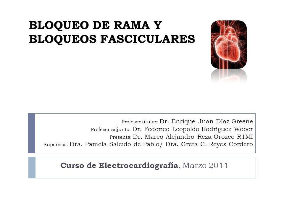 Sistema de conducción eléctrica Anatomía