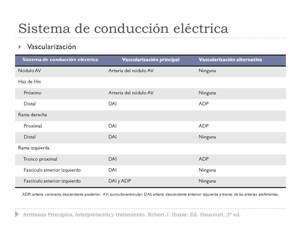 Sistema de conducción eléctrica Circulación