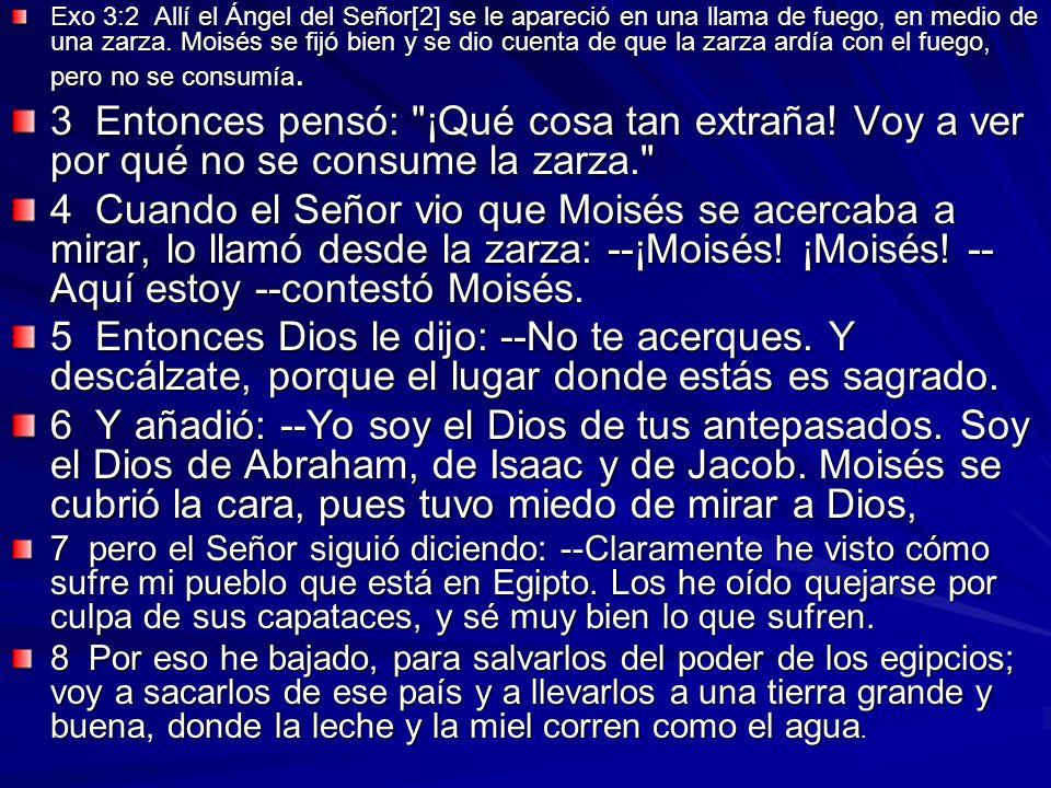 Exo 3:2 Allí el Ángel del Señor[2] se le apareció en una llama de fuego, en medio de una zarza. Moisés se fijó bien y se dio cuenta de que la zarza ar