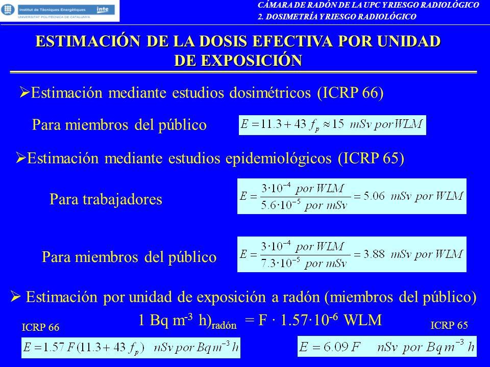 CÁMARA DE RADÓN DE LA UPC Y RIESGO RADIOLÓGICO 2. DOSIMETRÍA Y RIESGO RADIOLÓGICO ESTIMACIÓN DE LA DOSIS EFECTIVA POR UNIDAD DE EXPOSICIÓN Estimación