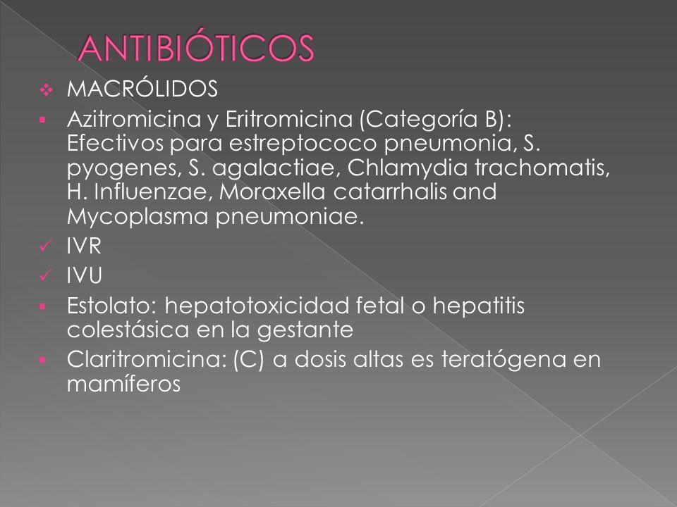 MACRÓLIDOS Azitromicina y Eritromicina (Categoría B): Efectivos para estreptococo pneumonia, S. pyogenes, S. agalactiae, Chlamydia trachomatis, H. Inf