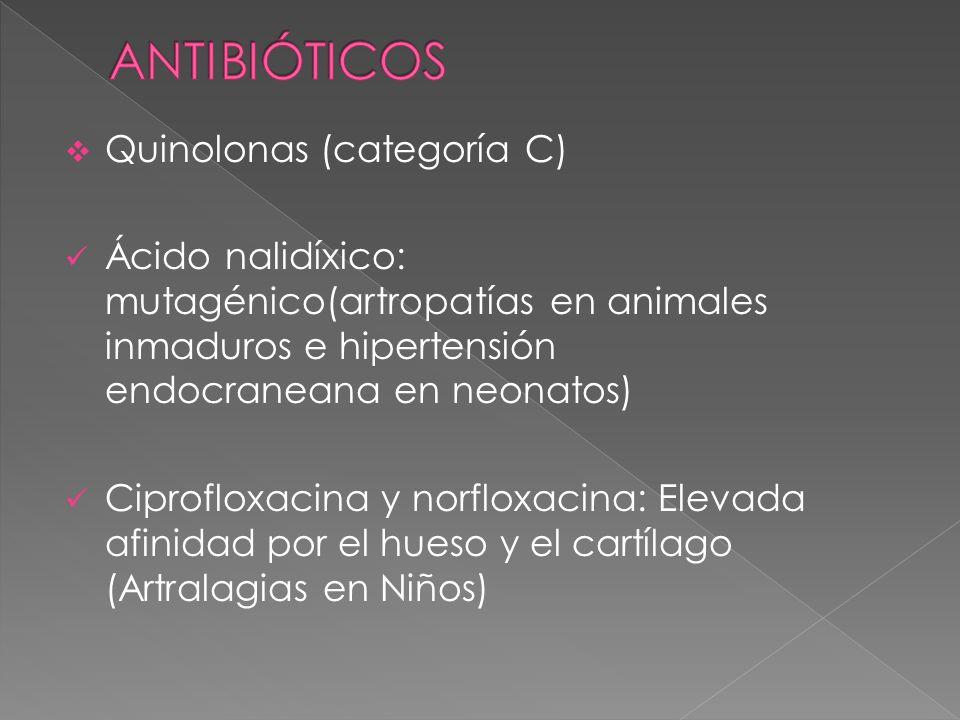 Quinolonas (categoría C) Ácido nalidíxico: mutagénico(artropatías en animales inmaduros e hipertensión endocraneana en neonatos) Ciprofloxacina y norf