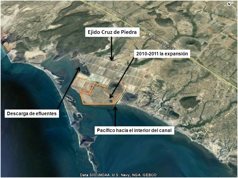 Ejido Cruz de Piedra 2010-2011 la expansión Descarga de efluentes Pacífico hacia el interior del canal