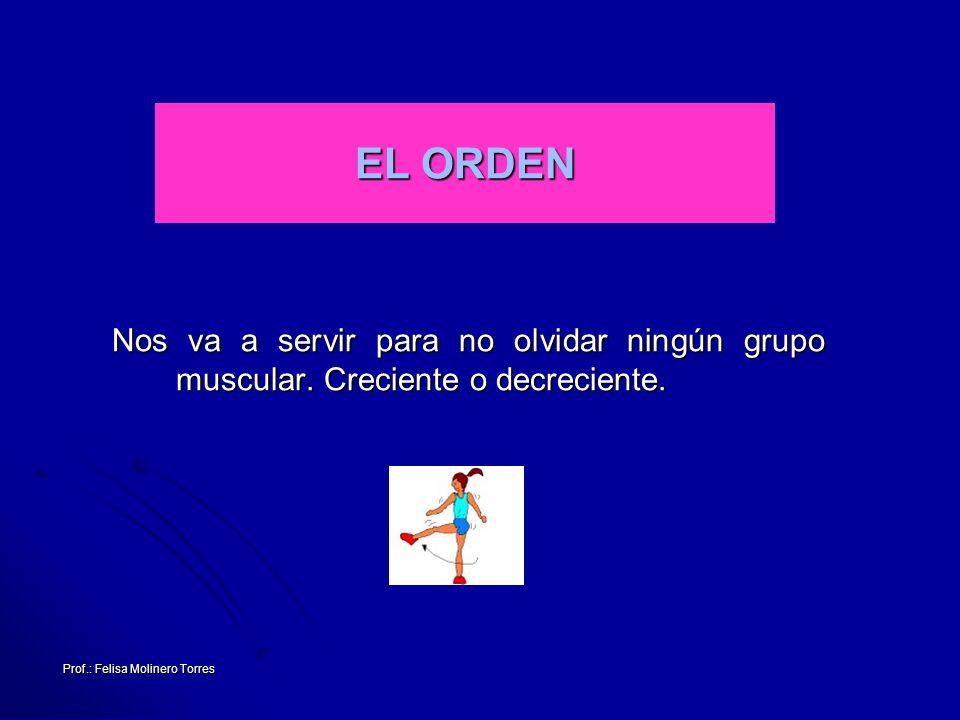 Prof.: Felisa Molinero Torres EL ORDEN Nos va a servir para no olvidar ningún grupo muscular. Creciente o decreciente.