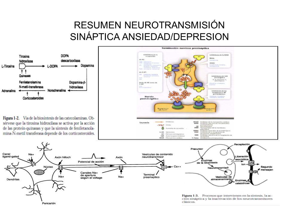Efectos de la acción antagonista 5HT2A Efectos asociados a la activación del receptor 5HT2A Sintomatología depresiva y ansiedad Acción antagonista sobre el receptor 5HT2A EFECTO ANTIDEPRESIVO – ANSIOLÍTICO Aumento de la serotonina en la hendidura Down-regulation rc.