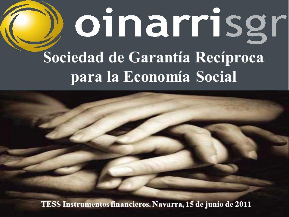 Sociedad de Garantía Recíproca para la Economía Social TESS Instrumentos financieros.