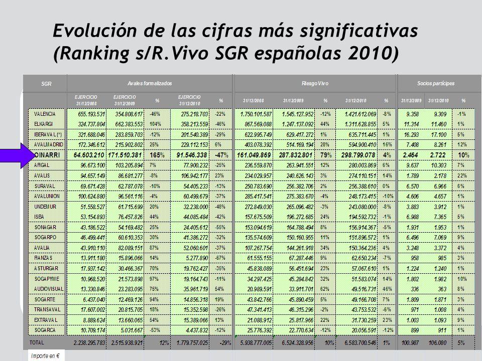 Evolución de las cifras más significativas (Ranking s/R.Vivo SGR españolas 2010)