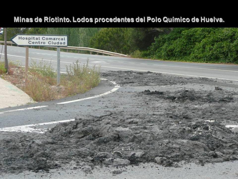 Minas de Ríotinto. Lodos procedentes del Polo Químico de Huelva.