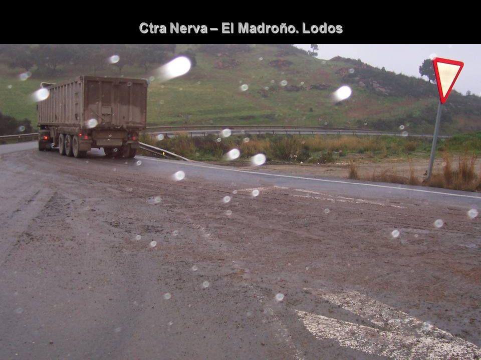 Ctra Nerva – El Madroño. Lodos
