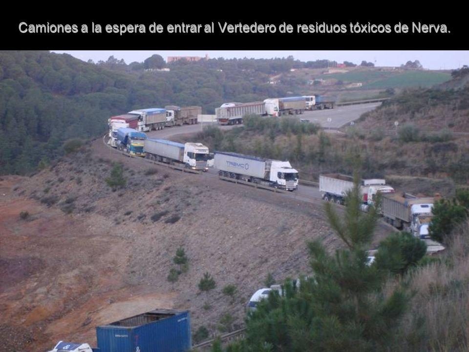 Camiones a la espera de entrar al Vertedero de residuos tóxicos de Nerva.