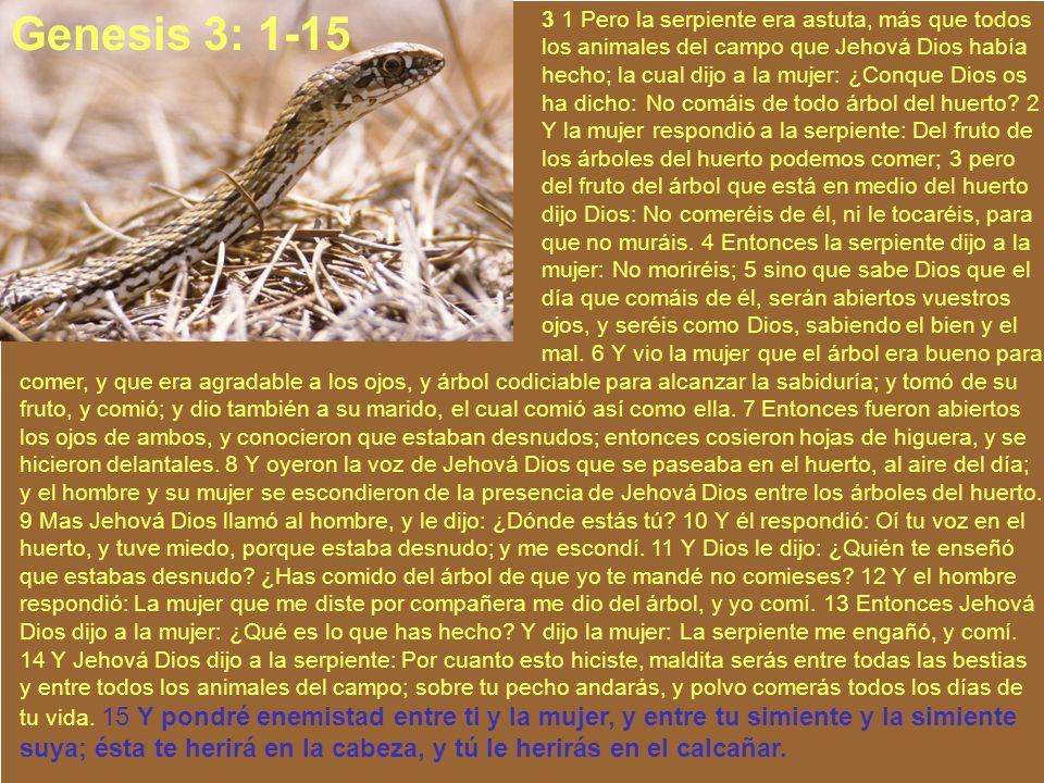 Ministerios EN PROFUNDIDAD 2008 3 1 Pero la serpiente era astuta, más que todos los animales del campo que Jehová Dios había hecho; la cual dijo a la