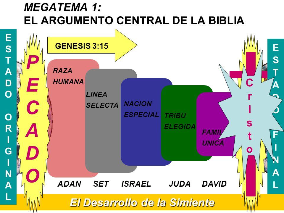 MEGATEMA 1: EL ARGUMENTO CENTRAL DE LA BIBLIA El Desarrollo de la Simiente ESTADOORIGINALESTADOORIGINAL RAZA HUMANA LINEA SELECTA NACION ESPECIAL TRIB