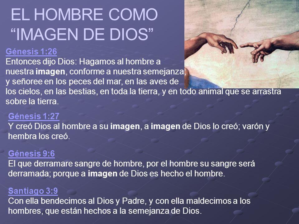 Ministerios EN PROFUNDIDAD 2008 EL HOMBRE COMO IMAGEN DE DIOS Génesis 1:26 Génesis 1:26 Entonces dijo Dios: Hagamos al hombre a nuestra imagen, confor