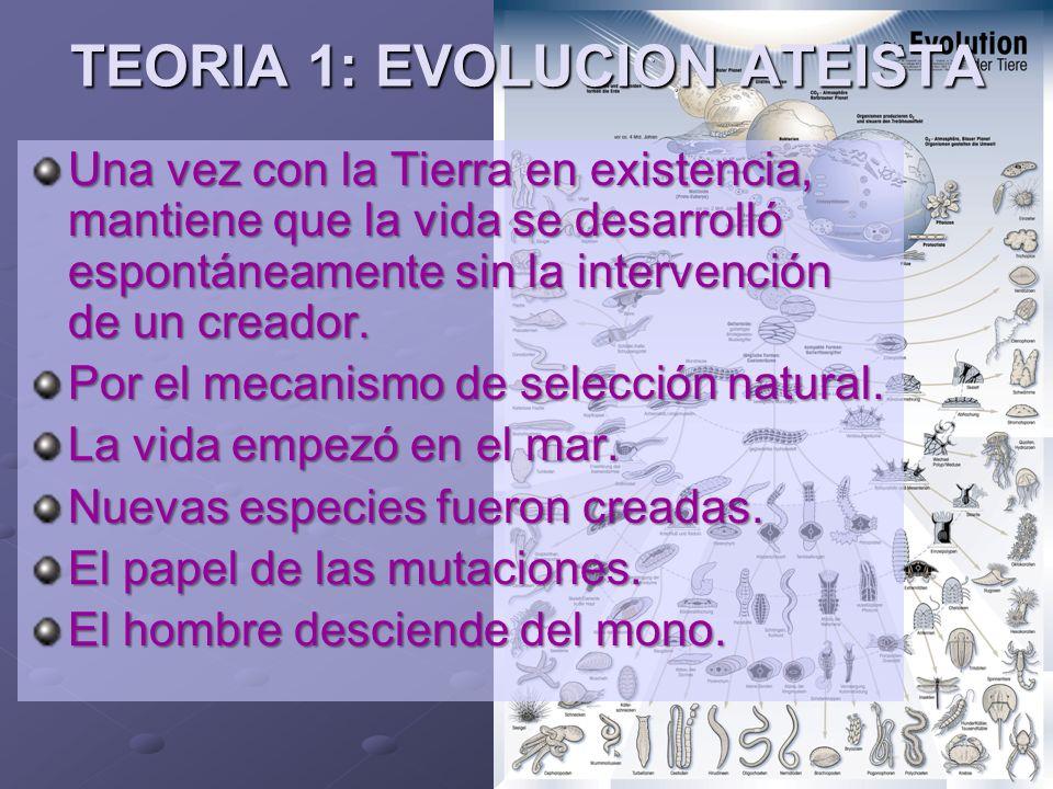 Ministerios EN PROFUNDIDAD 2008 TEORIA 2: EVOLUCION TEISTA Esta posición mantiene que Dios usó el mecanismo de la Evolución para la Creación del Universo y el ser humano.