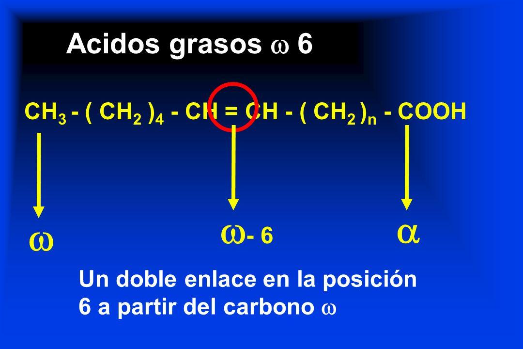 Acidos grasos 6 CH 3 - ( CH 2 ) 4 - CH = CH - ( CH 2 ) n - COOH - 6 Un doble enlace en la posición 6 a partir del carbono