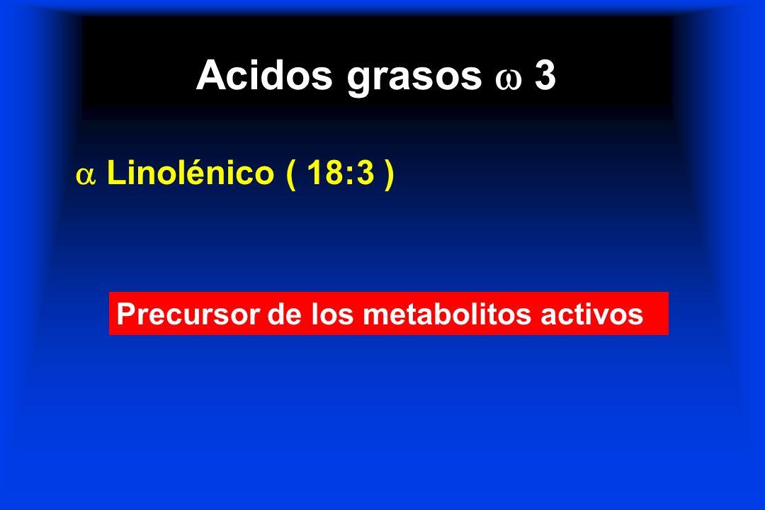 Acidos grasos 3 Linolénico ( 18:3 ) Precursor de los metabolitos activos