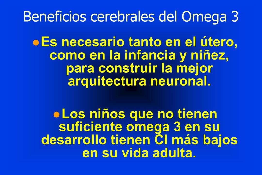 Beneficios cerebrales del Omega 3 l Es necesario tanto en el útero, como en la infancia y niñez, para construir la mejor arquitectura neuronal. l Los