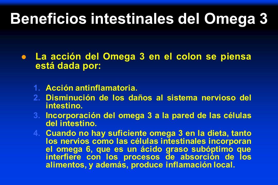 Beneficios intestinales del Omega 3 l La acción del Omega 3 en el colon se piensa está dada por: 1.Acción antinflamatoria. 2.Disminución de los daños