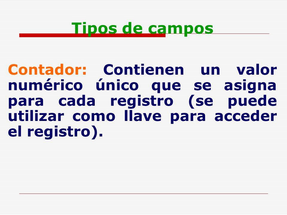 Tipos de campos Contador: Contienen un valor numérico único que se asigna para cada registro (se puede utilizar como llave para acceder el registro).