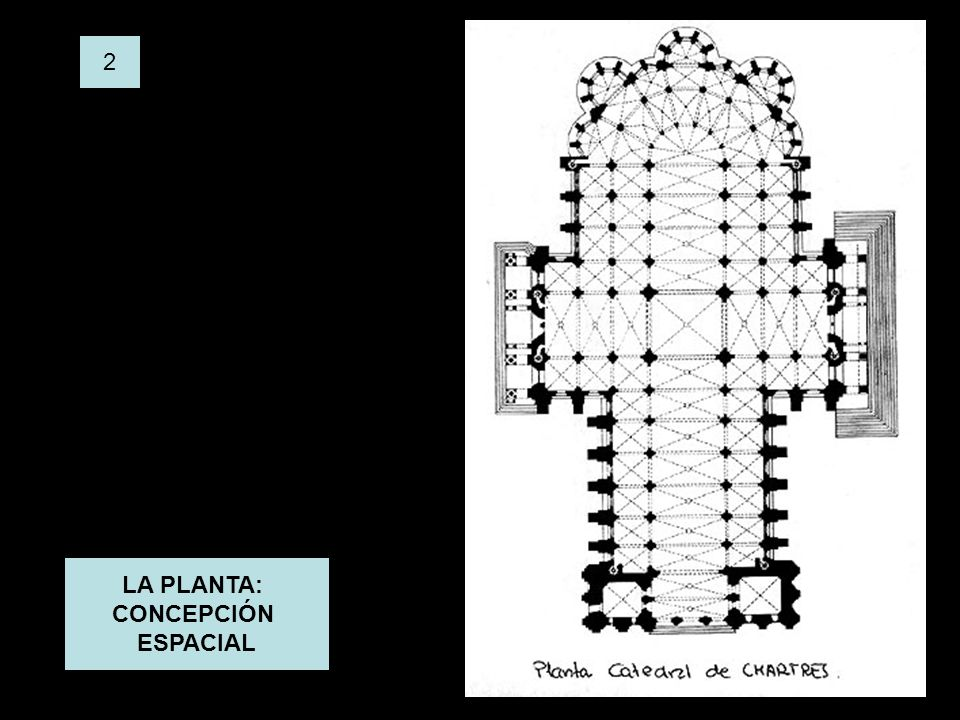 LA PLANTA: CONCEPCIÓN ESPACIAL 2