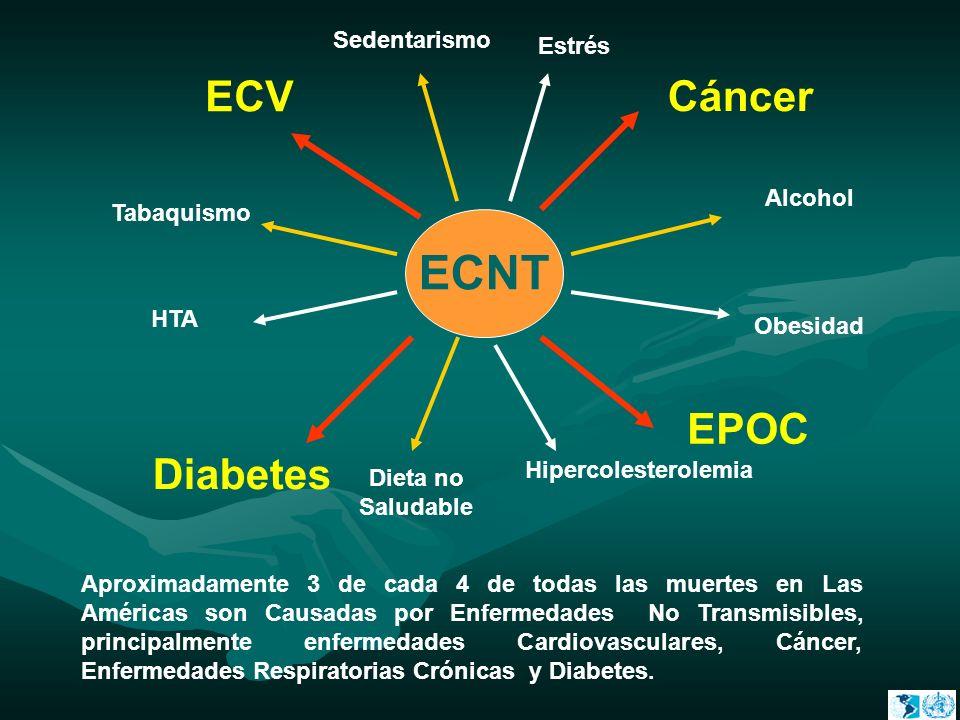 ECNT Diabetes EPOC Cáncer ECV Sedentarismo Alcohol Obesidad Dieta no Saludable Tabaquismo Aproximadamente 3 de cada 4 de todas las muertes en Las Amér