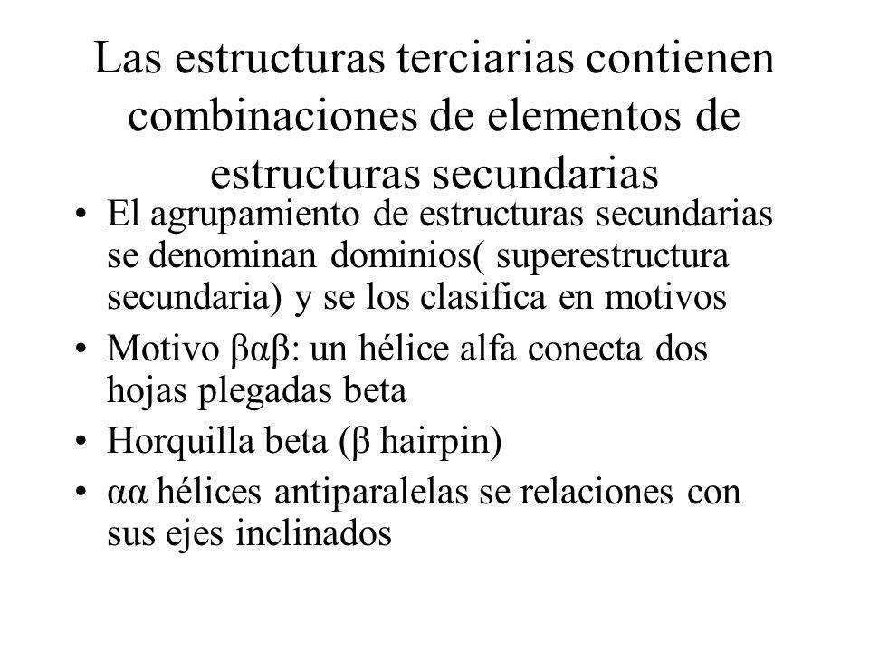 Las estructuras terciarias contienen combinaciones de elementos de estructuras secundarias El agrupamiento de estructuras secundarias se denominan dom