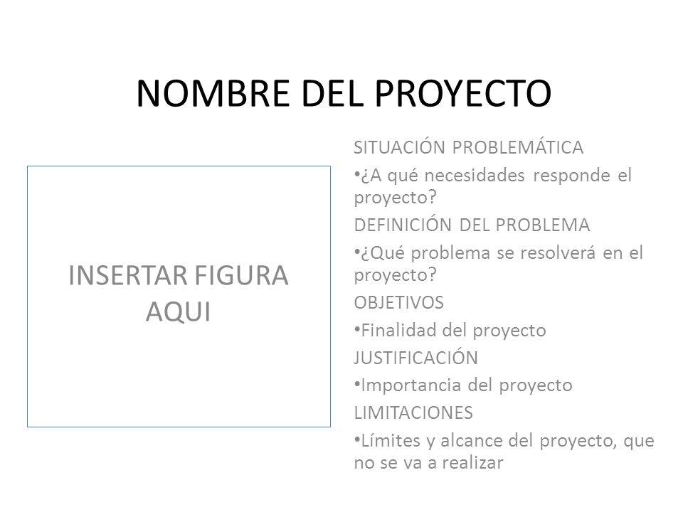 ANTECEDENTES DEL PROYECTO INSERTAR FIGURA AQUI Revisión de las investigaciones más importantes que se han realizado en el tema del proyecto.
