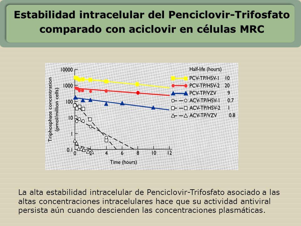 Estabilidad intracelular del Penciclovir-Trifosfato comparado con aciclovir en células MRC La alta estabilidad intracelular de Penciclovir-Trifosfato