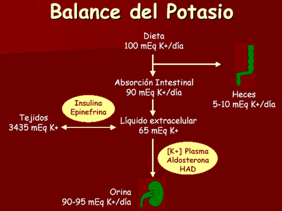 NEJM, Vol339, No7, 1998 Equilibrio Interno del Potasio Equilibrio ácido básico: Acidosis : H + a la célula y sale K : [K] sérica Equilibrio ácido básico: Acidosis : H + a la célula y sale K : [K] sérica C/ cambio de 0,1 U en pH : K en 1 mEq/L C/ cambio de 0,1 U en pH : K en 1 mEq/L Bomba NaK ATPasa: sale Na y entra K Bomba NaK ATPasa: sale Na y entra K Insulina: entra K a la célula, modulado por higado [K] sérica Insulina: entra K a la célula, modulado por higado [K] sérica