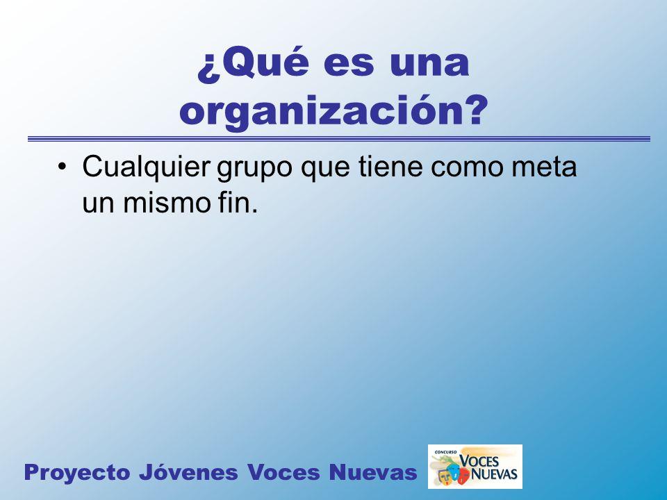 ¿Qué es una organización? Cualquier grupo que tiene como meta un mismo fin. Proyecto Jóvenes Voces Nuevas