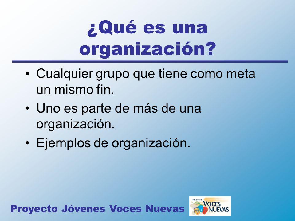 ¿Qué es una organización? Cualquier grupo que tiene como meta un mismo fin. Uno es parte de más de una organización. Ejemplos de organización. Proyect