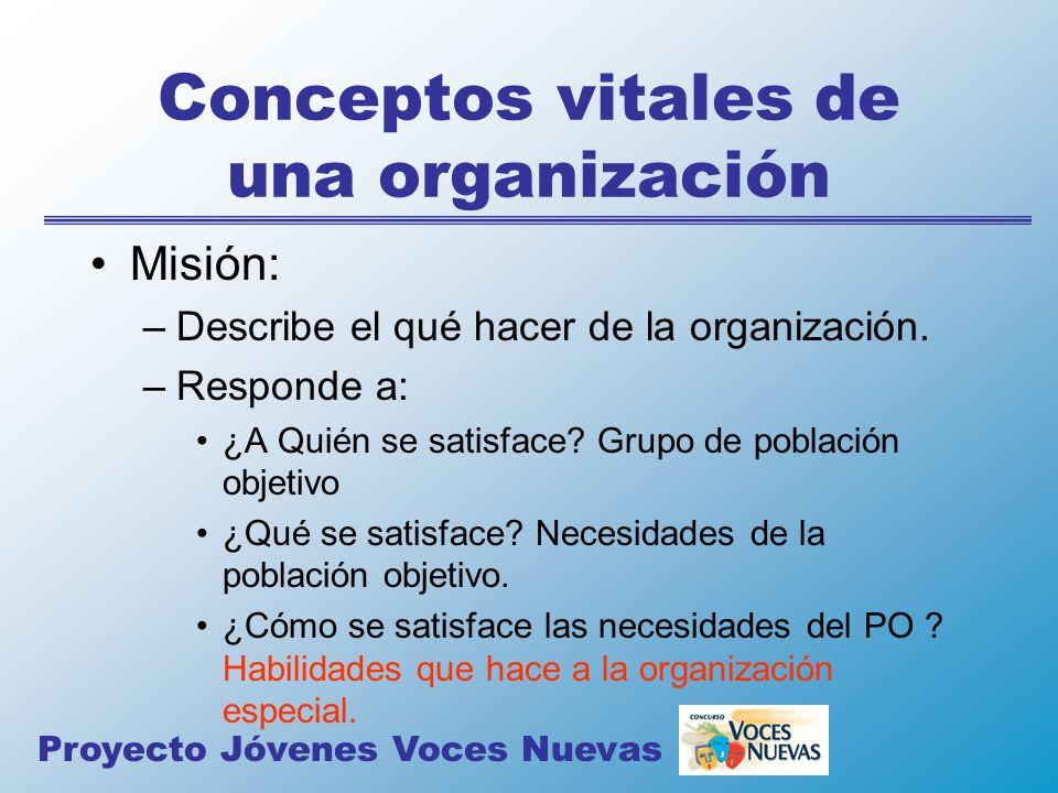 Conceptos vitales de una organización Misión: –Describe el qué hacer de la organización. –Responde a: ¿A Quién se satisface? Grupo de población objeti