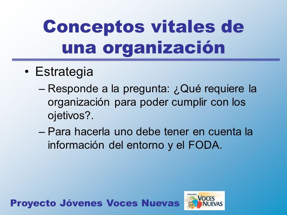 Conceptos vitales de una organización Estrategia –Responde a la pregunta: ¿Qué requiere la organización para poder cumplir con los ojetivos?. –Para ha