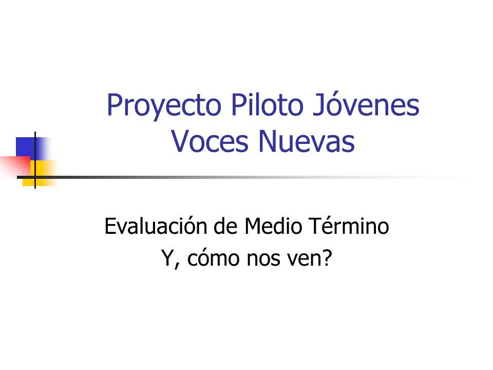Proyecto Piloto Jóvenes Voces Nuevas Evaluación de Medio Término Y, cómo nos ven?