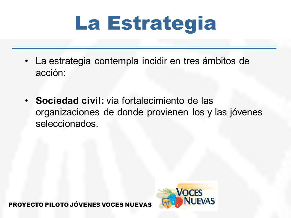 La Estrategia La estrategia contempla incidir en tres ámbitos de acción: Sociedad civil: vía fortalecimiento de las organizaciones de donde provienen