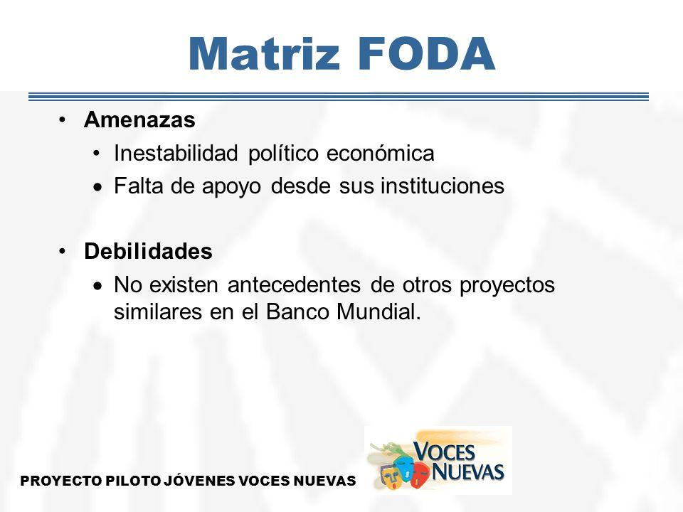 Matriz FODA Amenazas Inestabilidad político económica Falta de apoyo desde sus instituciones Debilidades No existen antecedentes de otros proyectos si