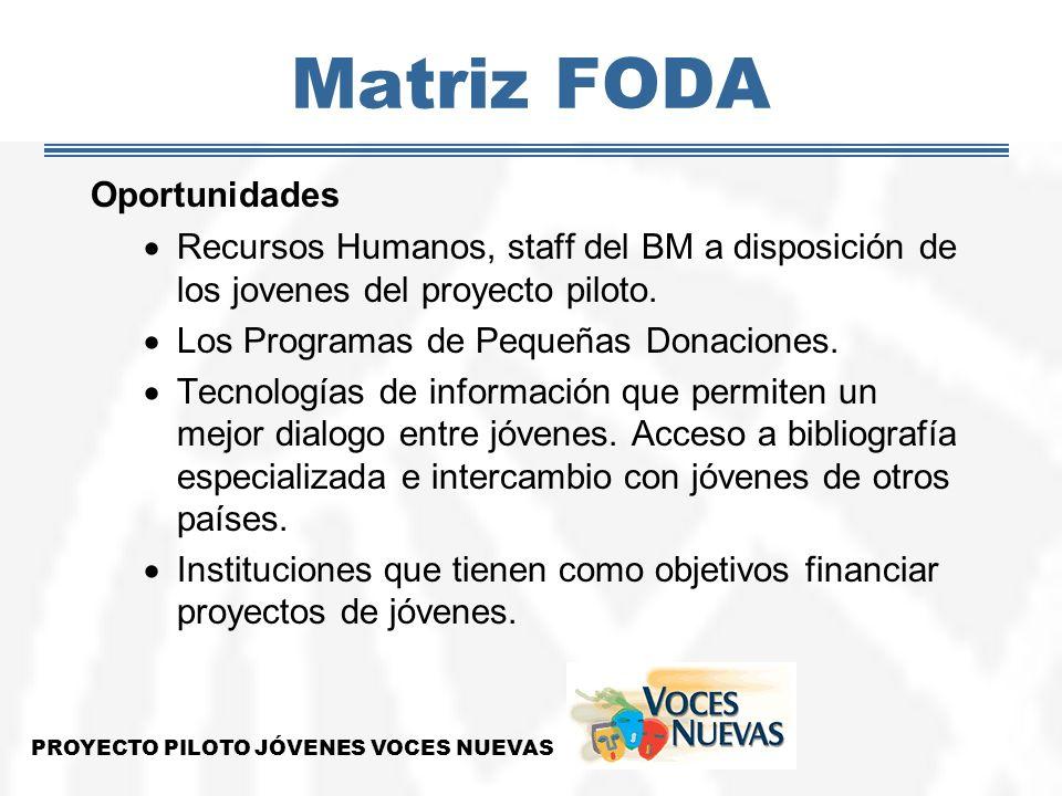 Matriz FODA Oportunidades Recursos Humanos, staff del BM a disposición de los jovenes del proyecto piloto. Los Programas de Pequeñas Donaciones. Tecno