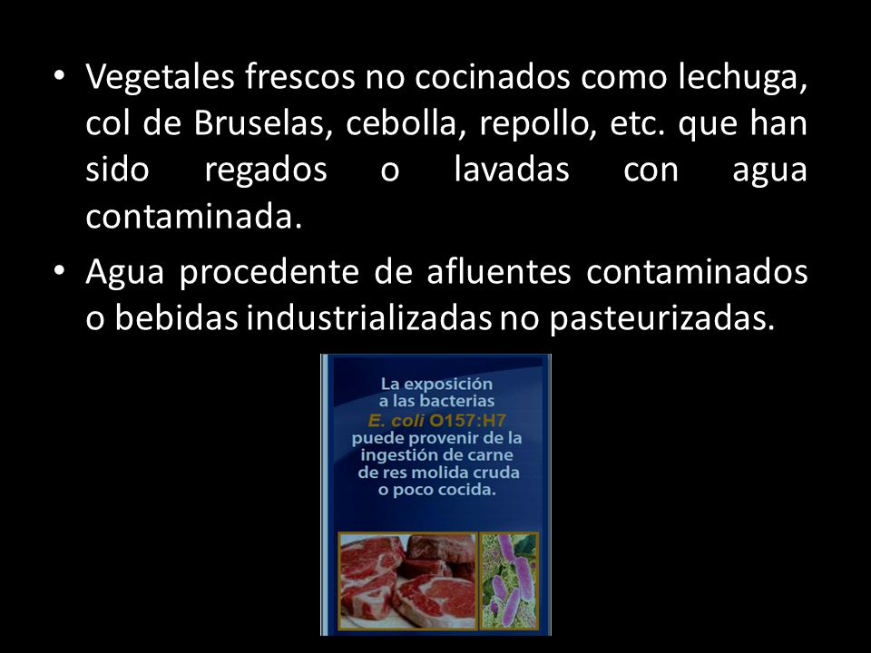 Vegetales frescos no cocinados como lechuga, col de Bruselas, cebolla, repollo, etc. que han sido regados o lavadas con agua contaminada. Agua procede