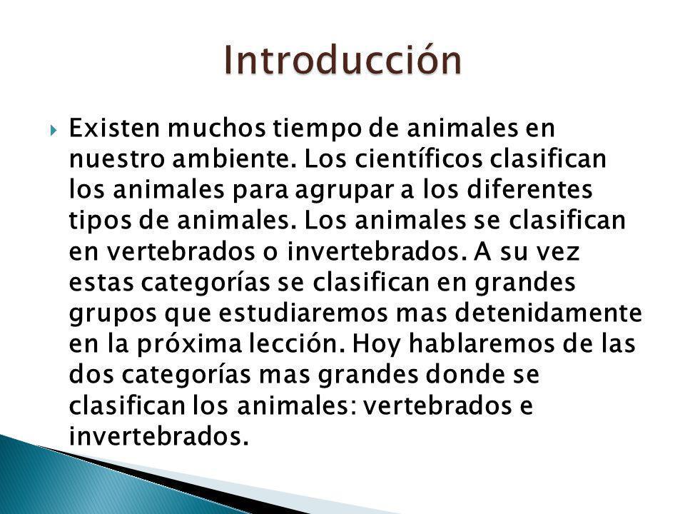 Existen muchos tiempo de animales en nuestro ambiente. Los científicos clasifican los animales para agrupar a los diferentes tipos de animales. Los an