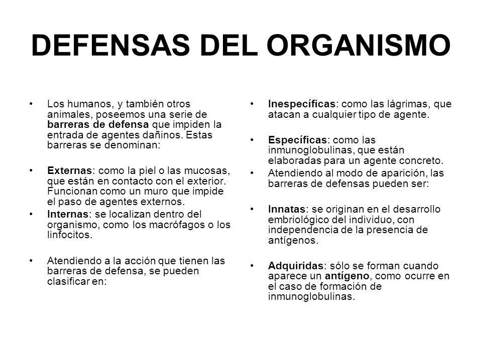 DEFENSAS DEL ORGANISMO Los humanos, y también otros animales, poseemos una serie de barreras de defensa que impiden la entrada de agentes dañinos. Est