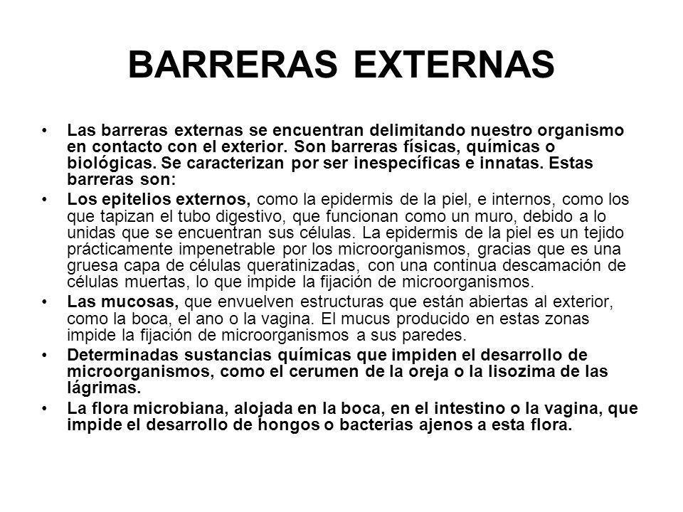 BARRERAS EXTERNAS Las barreras externas se encuentran delimitando nuestro organismo en contacto con el exterior. Son barreras físicas, químicas o biol
