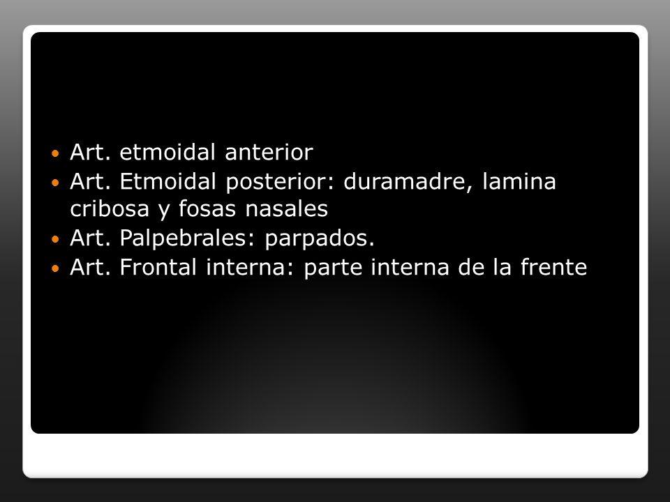 Art. etmoidal anterior Art. Etmoidal posterior: duramadre, lamina cribosa y fosas nasales Art. Palpebrales: parpados. Art. Frontal interna: parte inte
