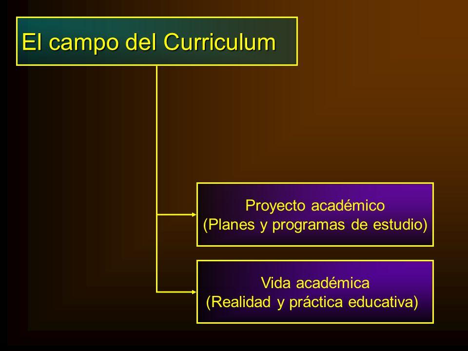 El campo del Curriculum Proyecto académico (Planes y programas de estudio) Vida académica (Realidad y práctica educativa)