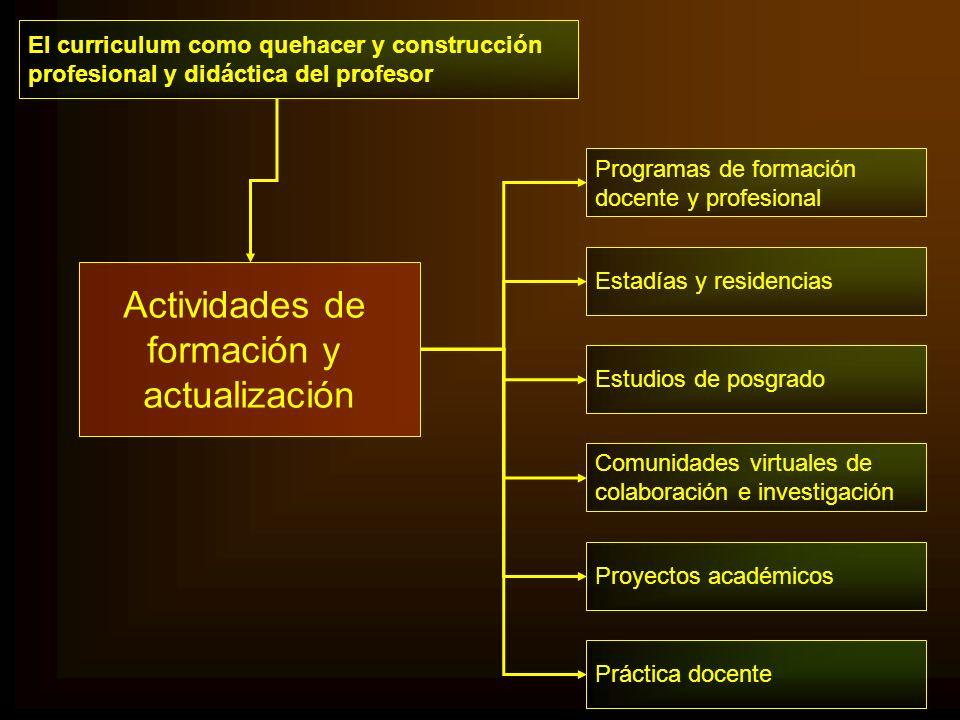 El curriculum como quehacer y construcción profesional y didáctica del profesor Programas de formación docente y profesional Estadías y residencias Es