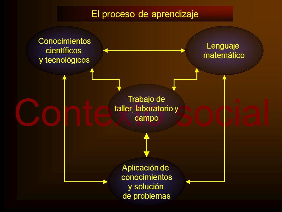 Contexto social Lenguaje matemático Trabajo de taller, laboratorio y campo Aplicación de conocimientos y solución de problemas Conocimientos científic